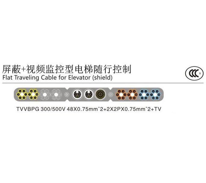 TVVGPG-TV电梯随行亚博体育ios系统下载