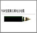 WDZ-YJV电力电缆